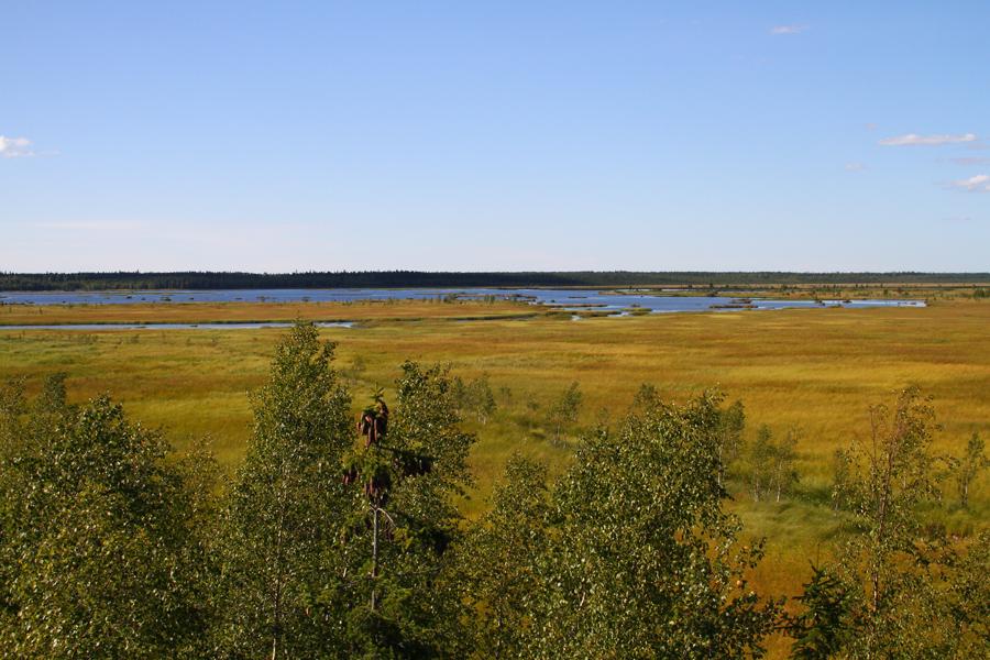 Levanevan maisemaa lintutornista katsottuna. Kuva: Jouni Kannonlahti
