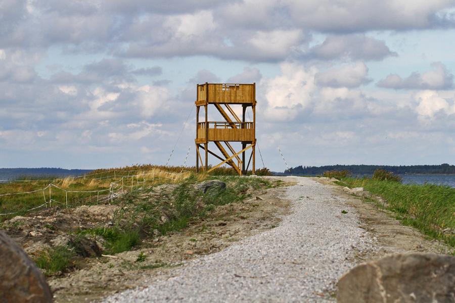 Gålörenissä on nykyään helppo havainnoida tornista. Kuva: Jouni Kannonlahti