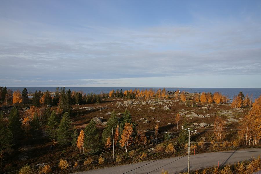 Näkymää tornista Klobbskatin niemelle. Kuva: Jouni Kannonlahti